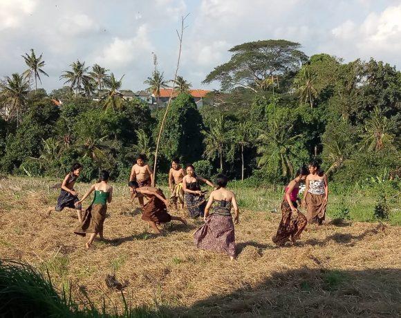 """""""Megandu"""" di Areal Persawahan Museum Subak Tabanan"""